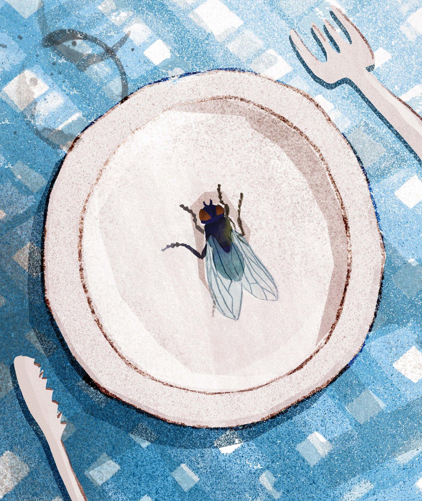 Ilustracja przedstawiająca muchę na talerzu, obrus i sztućce (ilustracja: Urszula Mierzwa)